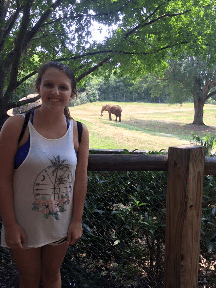 Visit the N.C. Zoo.