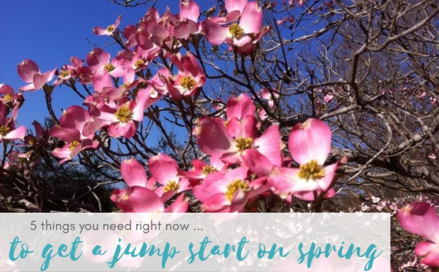 Five things you need right now … to get a jump start on spring