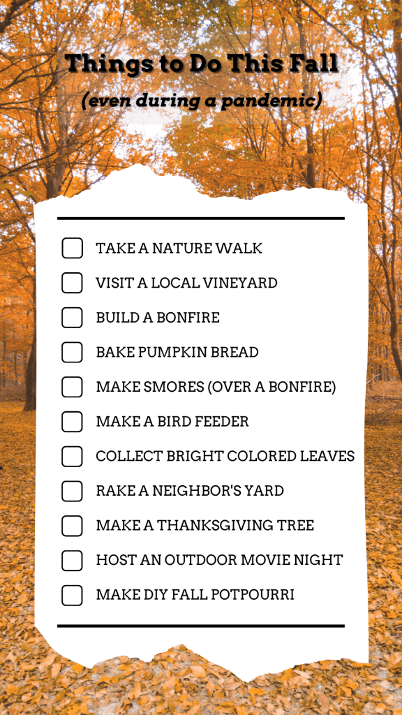 fall things to do during a pandemic