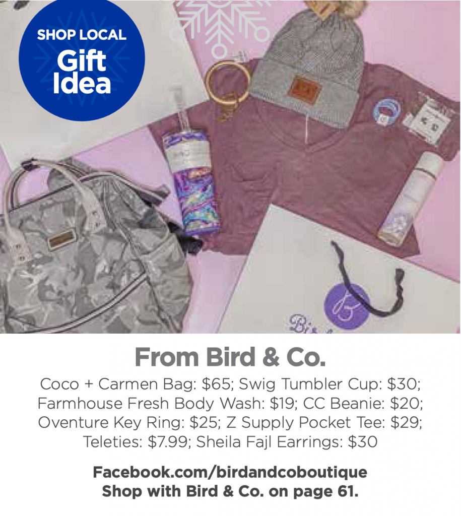shop local in Davie County bird & co.